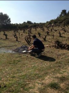 Maxime grills with the 100-year-old vines in the background