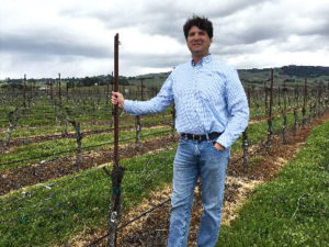 Mike Sangiacomo at the start of a row of the Roberts Road Pinot Noir block